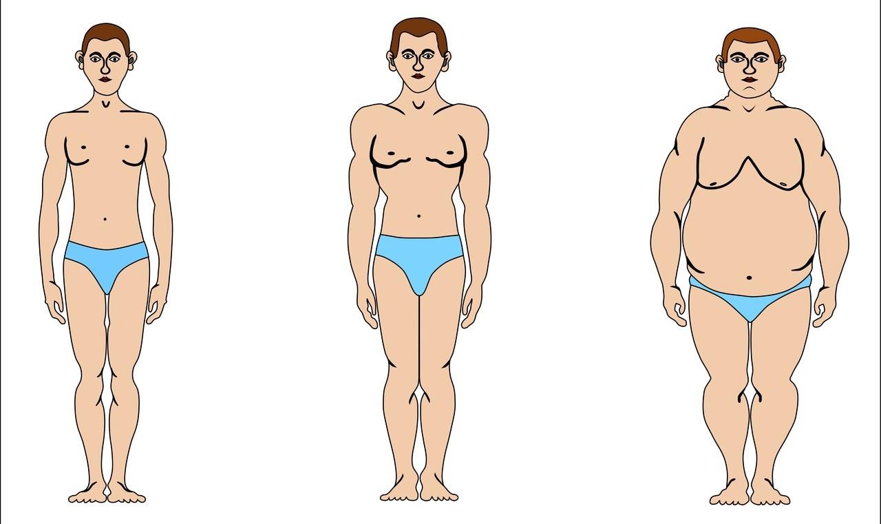 как похудеть в ляшках девушкам